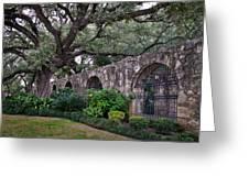 The Alamo Oak Greeting Card
