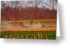 The Amish Way Greeting Card