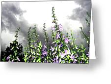 The Approaching Storm Greeting Card