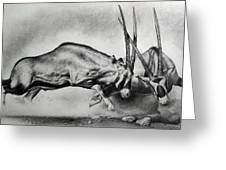 The Arabian Oryx Greeting Card