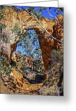 Golden Gully Gold Mine Greeting Card