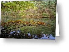 The Arsenic Lake Devon Great Consols Greeting Card