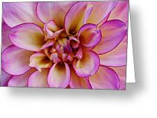 The Art In Flowers 1 Greeting Card
