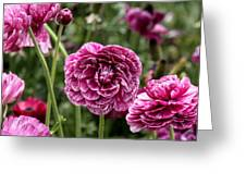 The Art Of Flowers Greeting Card
