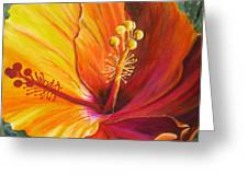 The Artisan Hibiscus Greeting Card