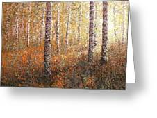 The Autumn Sun In The Birch Forest Greeting Card