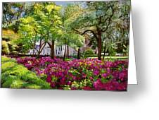 The Azaleas Of Savannah Greeting Card by David Lloyd Glover