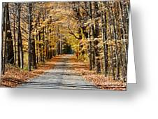 The Back Road In Autumn Greeting Card