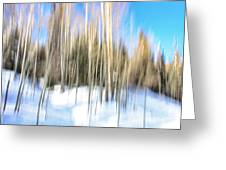 The Back Woods Greeting Card