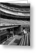 The Ballpark In Arlington Greeting Card by Ricky Barnard