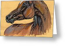 The Bay Arabian Horse 10 Greeting Card