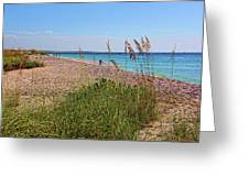 The Beaches Of Boca Grande Greeting Card