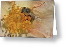 The Beautiful Bee Greeting Card