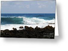 The Beauty Of The Sea Greeting Card