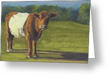 The Belted Cow Greeting Card