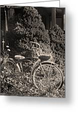The Bicycle Garden II Greeting Card