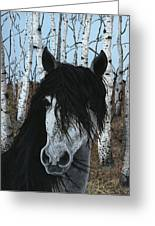 The Birch Horse Greeting Card