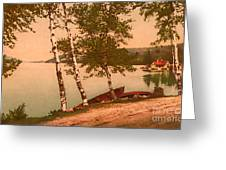 The Birches At Oak Birch Inn, Alton Bay, Lake Winnipesaukee, N. H.  Greeting Card