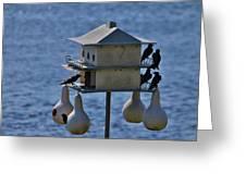 The Bird Hotel Greeting Card