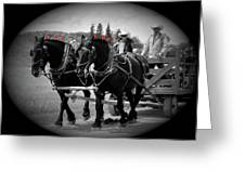 The Black Team - Bar U Ranch Greeting Card