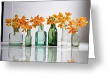 the Blooming yellow Ornithogalum Dubium in a transparent bottle instead vase Greeting Card