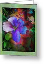 The Blue China Rose  Greeting Card