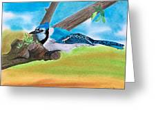 The Blue Jay  Greeting Card
