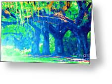 The Blue Live Oaks Greeting Card