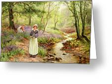 The Bluebell Glade Greeting Card by Ernest Walbourn