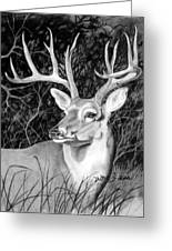 The Buck Greeting Card