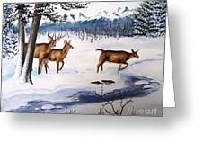 The Buck Stops Here Greeting Card