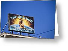 The Bulldog On Top Of The World Greeting Card