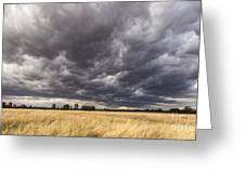 The Calm Before The Storm Greeting Card