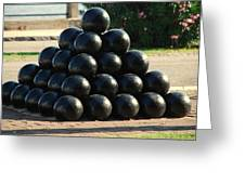 The Cannonballs At The Battery In Charleston Sc Greeting Card