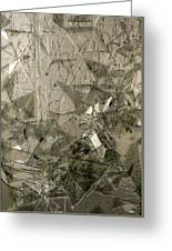 the 'Casuarina Understory' Greeting Card