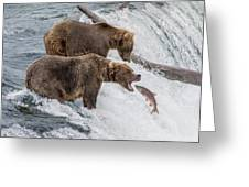 The Catch - Brown Bear Vs. Salmon Greeting Card