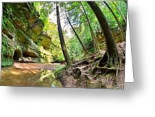 The Caves And Trail At Old Man's Cave Hocking Hills Ohio Greeting Card