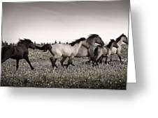 The Chase 1 Copper Greeting Card by Roger Snyder