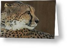 The Cheetah 2 Greeting Card