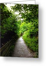 The Cliff Path At Lynton 4 Greeting Card