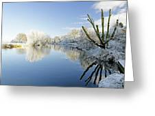 The Cold River Greeting Card