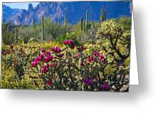 The Colorful Desert  Greeting Card