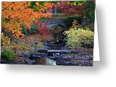 The Colors Of Fall Greeting Card