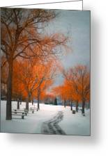 The Colours Of Winter Greeting Card