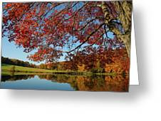The Comfort Of Autumn Greeting Card
