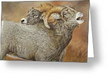 The Conquest - Bighorn Sheep Greeting Card