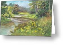 The Creek At 1302 Greeting Card