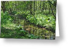The Creek Greeting Card