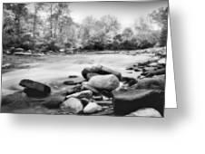 The Creek Greeting Card