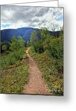 The Crooked Path Greeting Card